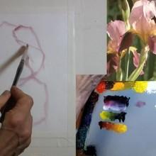 black-violet-thumbnail